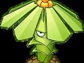 Tupistra Stalker Seed Packet Image