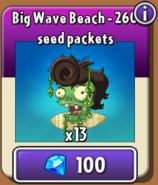 Big Wave Beach Piñata Store New
