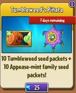 Tumbleweed's Piñata in Store