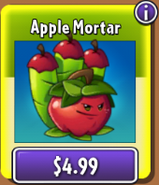 Apple Mortar in the NEW shop