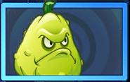 Squash Rare Seed Packet
