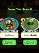 Choice between Dolphin Rider and Spring Bean
