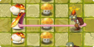 ToadstoolRangeUpgraded