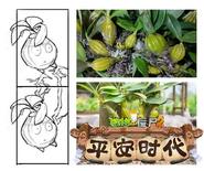 Windbreak Dendrobium Scrapped Design Concept