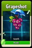 GrapeshotLevelUp