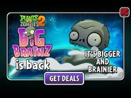 Big Brainz 2020
