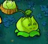 Cabbage-pultz blink