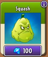 Squash New Store