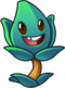 Official HD Thyme Warp.png