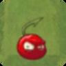 Small Cherry2