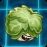 Headbutter Lettuce2
