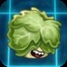 Headbutter Lettuce