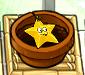 Smallstarfrut
