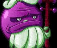 Elderberry cardface