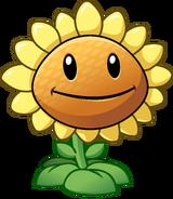 Sunflower HD