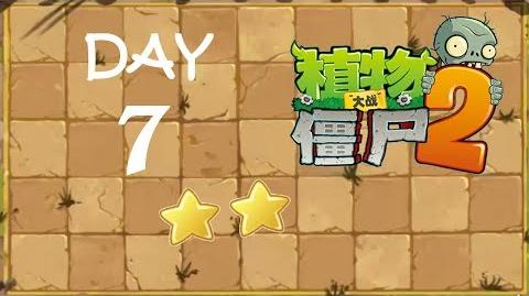 Kung Fu Day 7 SS