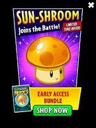 SunShroomAd
