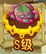 Royal Rafflesia ZG