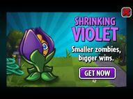 Shrinking Violet Ad