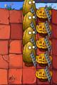 IMG 2116 tall-nut pumpkin ladder
