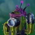 Cactus del Futuro