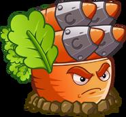 Carrot pf