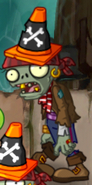 Conehead Pirate First Degrade