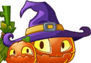 Pumpkin Witch Seed Packet Texture