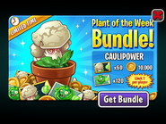 Plant of the Week Bundle - Caulipower