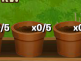 Seed slot