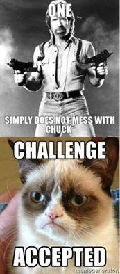 Chuck vs. Grumpy.jpg