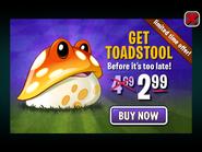 ToadstoolLimitedTimeOffer