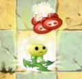 Dandelion PFC