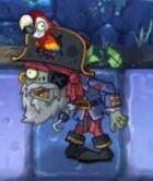 PirateCaptaininDarkAges