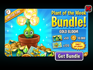 Plant of the Week Bundle - Gold Bloom