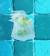 Frozen Peashooter