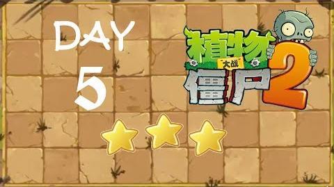 Kung Fu Day 5 TS
