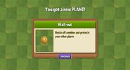 Getting Wallnut