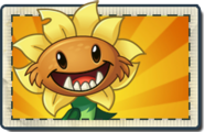 Primal Sunflower Boosted Seed Packet