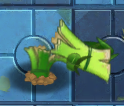 Sugarcane's Death