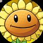 Odblokowany Słonecznik