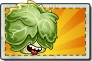 Headbutter Lettuce Boosted Seed Packet