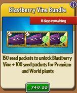 BlastberryVineBundle