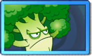 Broccoli Rare Seed Packet