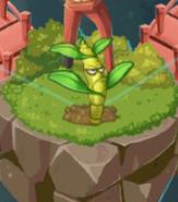 DendrobiumMap