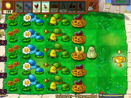 Pvz survival day by rab