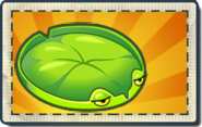 Lily Pad Boosted Seed Packet