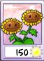 Twin Sunfower Seed