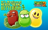 Never Bean Better