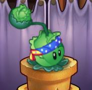 Cabbage Costume PvZOL